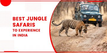 Best Jungle Safaris To Experience In India
